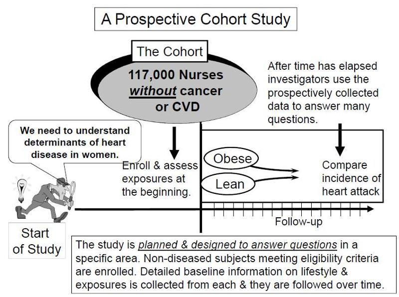 Cohort Studies - Boston University