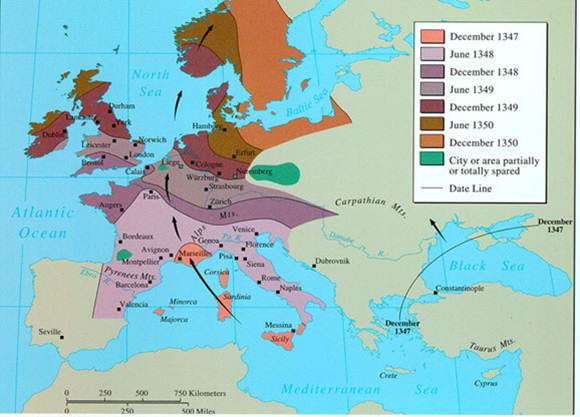 the political social and economic effects of the bubonic plague in europe What were the political,economic,and soical effects of political economic soical effects black death: what was the effect of black death in europe.