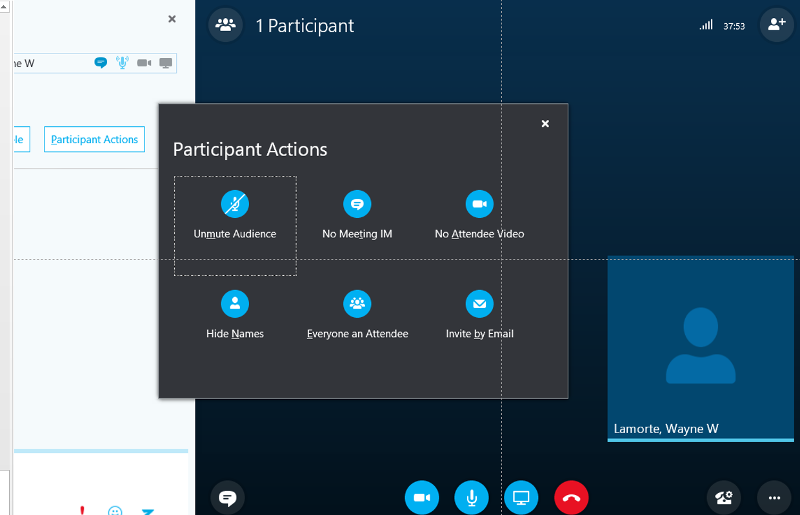 Inside the Online Meeting on a PC