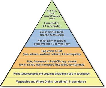 disadvantages of food pyramid
