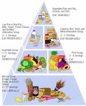 Cara Diet Sehat Anak Kost